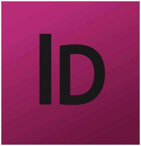 Adobe InDesign Logo 2008-2010