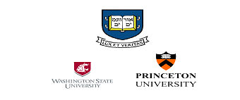 American universities with the most creative logos