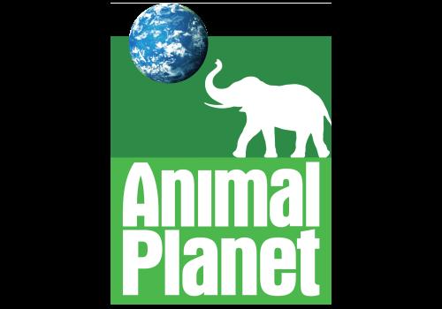 Animal Planet Logo 2006