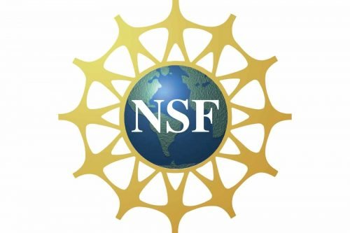 National Science Foundation Logo 1999