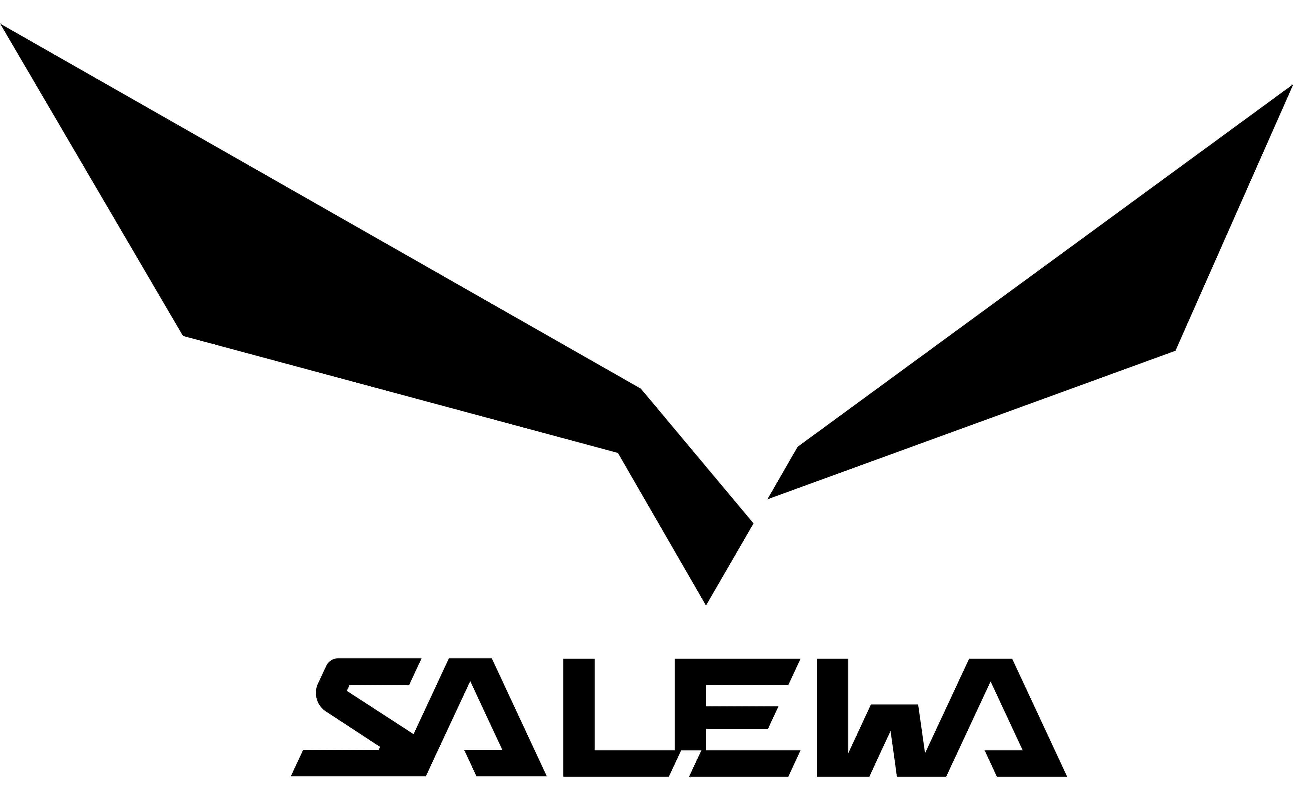 Salewa logo and symbol, meaning, history, PNG