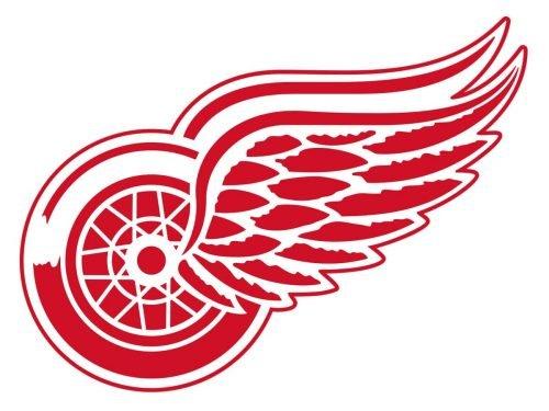 Detroit Red Wings nfl logo