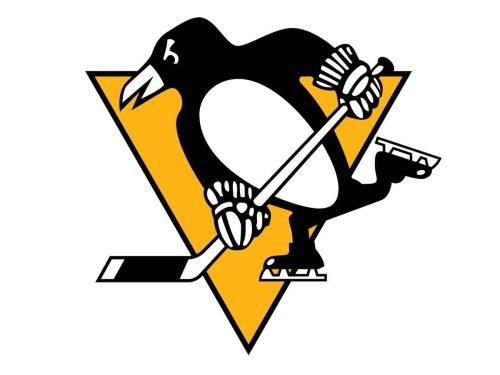 Pittsburgh Penguins nfl logo