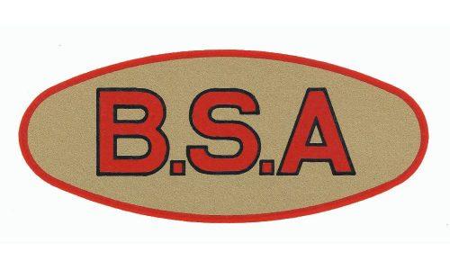 BSA Logo 1919