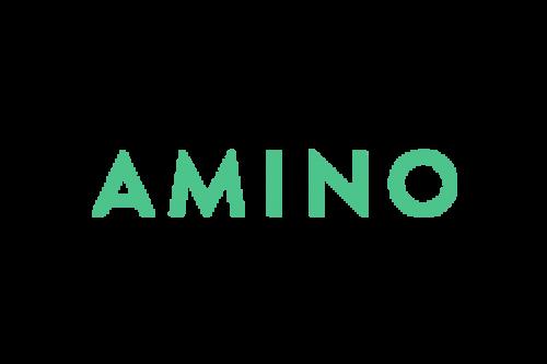 Amino Logo 2014