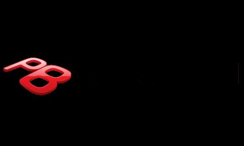 Packard Bell logo