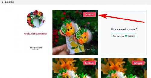 How to download a photo or video from Instagram iGrab Step 3