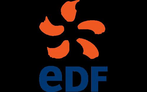 EDF (Électricité de France) Logo 2005